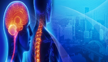 Spine and Brain Neurosurgery